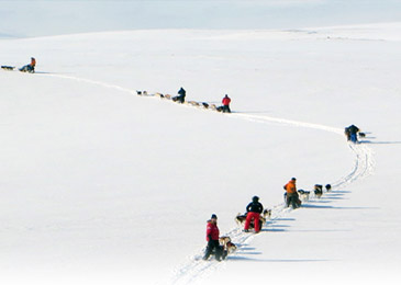 arctic-expedition-3