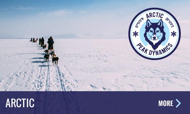 experience-panel-arctic